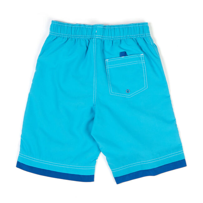 Little Boys' Signature Swim Trunks With Con Flange (4-7),Washed Blue,large
